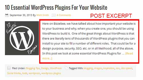 How To Create WordPress Excerpts And Include Links In Them