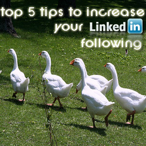 Top 5 Tips To Increase Your LinkedIn Following